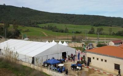 salon de la production d'olive et huile d'olive